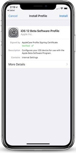 واجهة تثبيت الملف التعريفي لنظام iOS 12